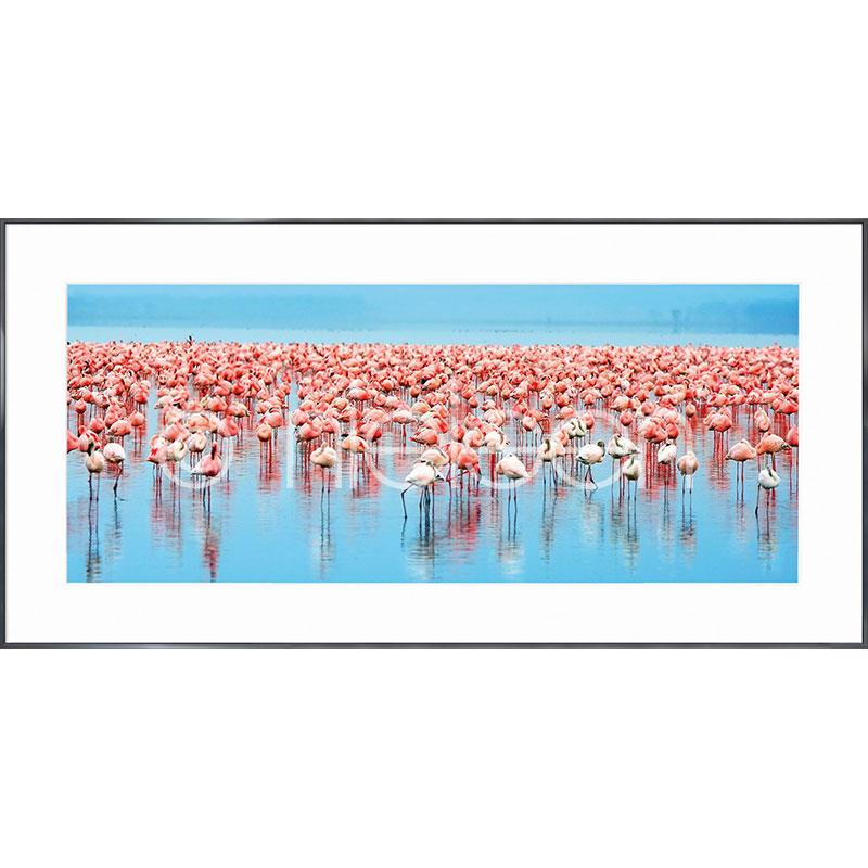 """Beeld met lijst """"Flamingos"""" met lijst van aluminium Alpha"""