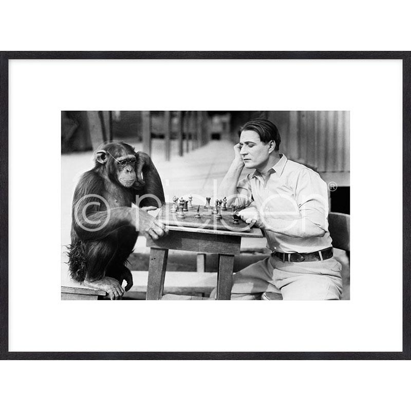 """Beeld met lijst """"Monkey chess"""" met lijst van hout Quadrum"""